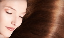 $25 for a Haircut, Deep Conditioning Treatment, and Style at Aspen Salon and Day Spa