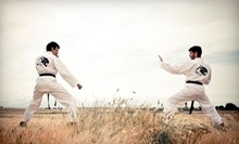 C$10 for a 12:30pm Intro Martial Arts Class at Shinka Martial Arts