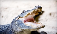 $25 for Two Admissions at Jungle Adventures Nature Animal Park