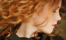 $50 for a Haircut, Style, &amp; Color at Hair Designers at Eastlake