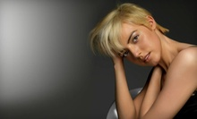 $39 for Haircut and blowdry at Hair by Sean Anthony