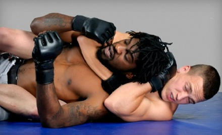 $10 for an All-Day Pass at Pure Performance Martial Arts Center