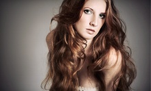 "$98 for 24"" Clip-In Hair Extensions at Images Salon - Dallas"