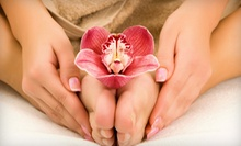 $10 for a Regular Bikini Wax at Organica Wax &amp; Beauty Studio