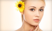 $25 for a Pumpkin Enzyme Facial at Sherry Vitek Skin Care at Camacho's Salon