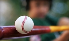 $5 for Over 100 Pitches at Batting Cages at Charlie Rose Baseball