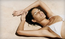 $15 for a Custom Airbrush Tan at Tan on the Boulevard