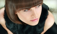 $99 for a Haircut, All Over Color with Highlights  at Warren Wilkes Salon