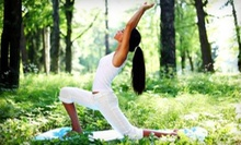 $7 for a One-Hour Drop-In Gentle Yoga Class at 12 p.m. at Yoga Spring Studio