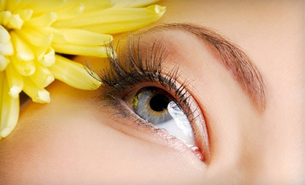 $14 for a Eyebrow Wax and Shaping at TNN Beauty