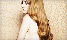 $45 for a Single Process Color Application, Blowdry, and Style at Hair Addiction