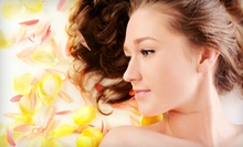 $95 for Partial Highlights, Cut, Style, and Makeup Application at Russ and Company Salon