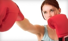 $10 for a One-Hour 7:30 p.m. MMA Class at Emerald Smoke MMA & Fitness