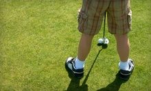 $4 for a 19-Hole Round of Mini-Golf for One Adult  at Choice Tee