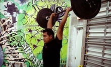 $7 for a One-Hour Crossfit Session at 9:00 a.m.  at CrossFit Homestead