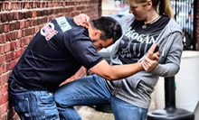 $5 for a Muay Thai/Kickboxing Class at 10 a.m. at Roshankish Krav Maga