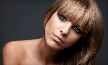 $90 for a Partial Highlight or Single Process Color, Cut &amp; Blow Dry at WS Hairstyling