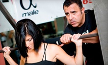 $25 for 30 minute High Altitude Training Session at Bodies By Mahmood