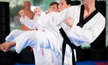 $5 for a Fitness Kickboxing Class at 6:30 p.m.  at American Martial Arts Academy