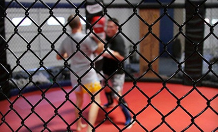 $10 for a Private Lesson at Daddis MMA and Fitness Academy