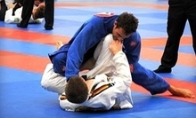 $15 for an 11:00 a.m. Brazilian Jiu-Jitsu Class at Gracie Barra Manhattan Beach
