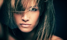 $25 for a Deep Cond.Treatment, Blowdry & Style (up to $65 value) at Nina Hair Studio