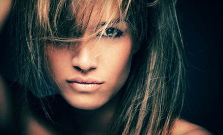 $25 for a Deep Cond.Treatment, Blowdry &amp; Style (up to $65 value) at Nina Hair Studio