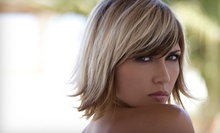$49 for A Single Process Color & Ladies Blow Dry at Tiano Salon Spa
