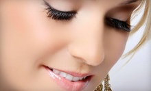 $79 for Full Lash Extensions at Amazing Lash Studio