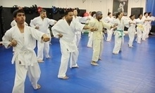 $18 for 6:00 pm Adult Karate Class for All Belt Levels at Matsumoto Dojo
