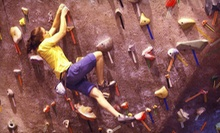 $20 for a Half-Hour Staff Belay for Two People at Island Rock