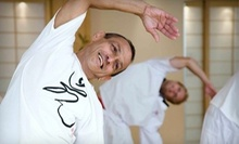 $10 for $20 at Tao Yoga and Tai-Chi