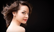 $25 for $50 Worth of Salon Services at Hair Design with Brandon Bayer