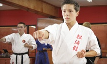 $5 for a Kick Boxing Class at 6:15 p.m. at Tiger's Den Martial Arts &amp; Fitness