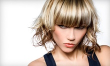 $20 for $40 Worth of Women's Hair Services with Owner at Fa-El Salon