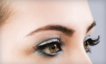 $10 for an Eye Brow Wax at DeLuxe Salon in Studio City