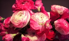 $12 for $20 Worth of Cut Flowers at Falls Flowers, LLC
