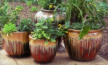 $15 for $30 Worth of Pottery, Garden Supplies and Home Decor at AW Pottery Atlanta