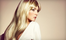 $75 for a Haircut and Highlights at The Orange Chair Salon & Spa