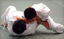 $8 for a  Bullyproof Youth MMA Class at 5:10 p.m.  at Energy Sport Complex