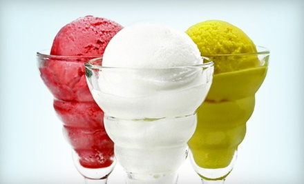 $4 for $8 Worth of Ice Cream, Italian Ice, and Candy  at Water 'n Ice