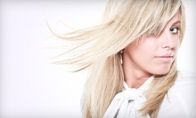 $65 for Sunkissed Highlights  &amp; Deep Conditioning Treatment at Studio 37 Salon