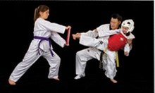 $5 for $10 at Grosse Pointe Academy of Taekwondo