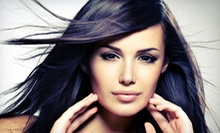 $31 for a Precision Haircut, Wash, Blow Dry &amp; Style  at Organelle Spa &amp; Salon