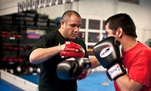 C$30 for a 10am Muay Thai class & 30 min. Personal Training Session at Lanna Mixed Martial Arts