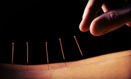 $25 for 5-Minutes Osteopathic Manipulation and One-Hour Acupuncture at Tamara Wolfson, MS, LAc