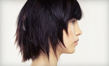 $100 for a Hair Cut and Partial Highlights at Diane Valentino