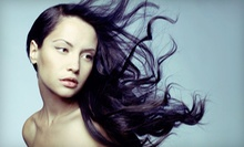 $89 for a Haircut, Wash & Blow-Dry at Mauro Hair Studio