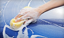 $56 for Steves Mini Detail Package at Steve's Detailing and Hand Car Wash