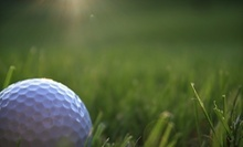 $50 for 1 Hour Swing Analysis at Reason's Golf Academy